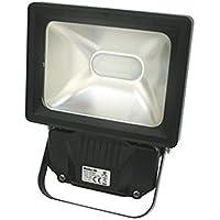 Foco exterior de LED Electro DH, 230 VAC, 10 W de potencia, 6500K, 820 lumens, protección IP65, 81.740/10/DIA