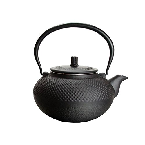 Teekanne Guss 1,5L Asia Japan Style Teesieb Tee Kanne