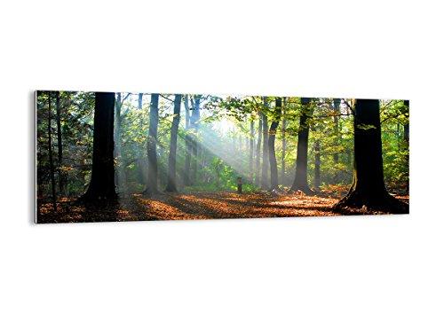 cuadro-sobre-vidrio-cuadro-de-cristal-de-una-sola-pieza-ancho-140cm-altura-50cm-foto-nmero-0136-list