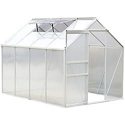 Outsunny Serre de Jardin Aluminium Polycarbonate 9,17 m³ 2,5L x 1,9l x 1,93H m avec fenêtres et Porte coulissante