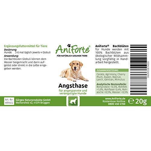 "AniForte® *Bio-Bachblüten ""Angsthase"" für Hunde 20g Globuli - 2"