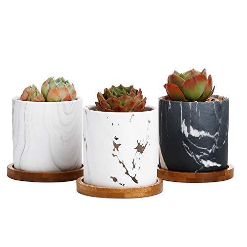 Von Hand Bemalt, Sind Mit Schreibtischen (Greenaholics Sukkulenten-Blumentöpfe - 7,6 cm zylinderförmiges Keramik-Pflanzgefäß für Kaktus, Sukkulenten, mit Drainageloch, Bambus-Tablett, 3er-Set)