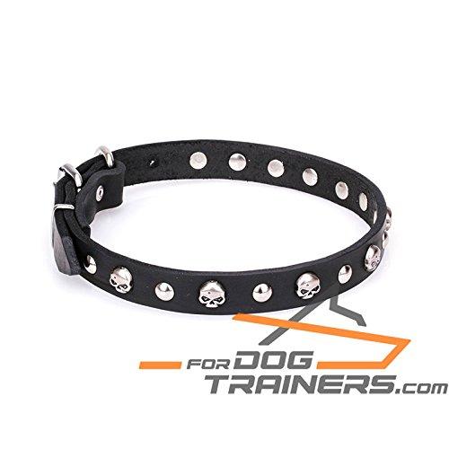 ForDogTrainers Collar de piel para perro con calaveras y broches de media esfera – 'Inspiración gótica' – 25 mm de ancho