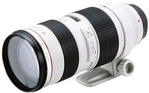Canon EF 70-200 mm / 1:2,8 L USM Objektiv (77mm Filtergewinde)