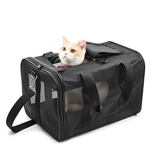 Hitchy Transportbox Katzex Hundebox für Katzen, Kleine Hunde, Kätzchen oder Welpen, Airline zugelassen, Reisefreundliche (M) - Katze Transportbox