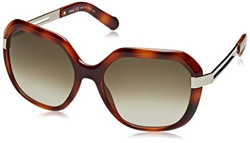 Chloè Damen Eye Sonnenbrille, Braun (Havana), 57