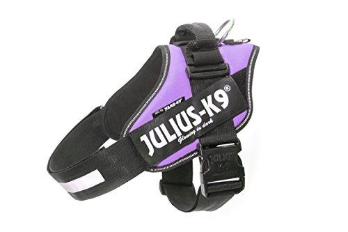 Julius K9 16IDC-PR-2 IDC-Powerharness, Size: 2, Purple, M, Morado