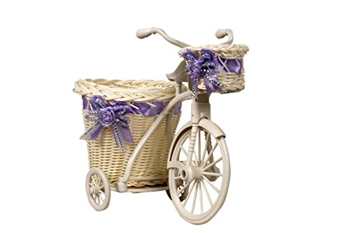 Pindia Random Color (Only Ribbon) tricycle Bike Design Rikshaw Decorative Flower Vase Large  available at amazon for Rs.351