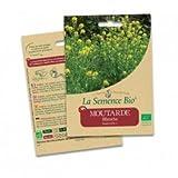 Graines Moutarde blanche - 25g - La Semence Bio