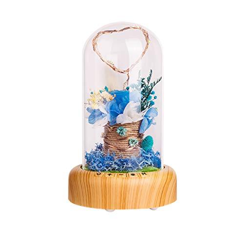 DEESEE(TM) (TM) Immerwährende Blume Musik Ball Micro Landscape Streamer Flasche Nachtlicht Bluetooth Lautsprecher für Paarliebhaber Geburtstag Urlaub Geschenk Light 55cm x 72cm B