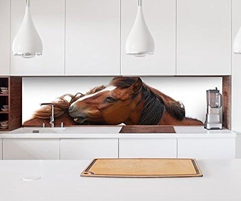 Aufkleber Küchenrückwand Pferde Liebe Tier Pferd Hengst Stute Folie selbstklebend Dekofolie Fliesen Möbelfolie Spritzschutz 22A863, Höhe x Länge:60cm x