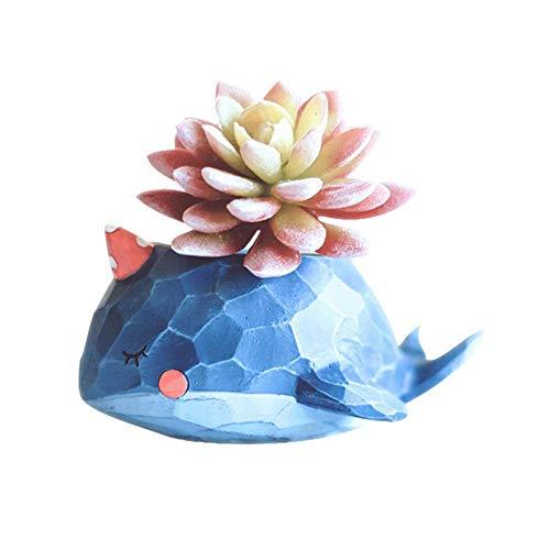 FOONEE Colorful Sukkulente Töpfe, Blumentöpfe Bulk Cute Animal Sukkulente Übertopf Blumentopf Decor für Home Office Schreibtisch Blue Whale