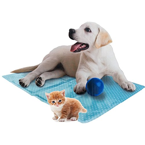 thebigship-pet-dog-cat-cooling-mat-colour-blue-size-60-x-44cm