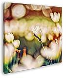 deyoli kleine Raupe auf Einer weißen Blume Format: 40x40 Effekt: Zeichnung als Leinwandbild, Motiv auf Echtholzrahmen, Hochwertiger Digitaldruck mit Rahmen, Kein Poster oder Plakat