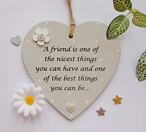 A friend is one of the nicest things you can have.. Holzschild