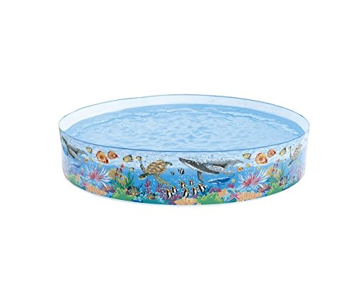 Intex 58472NP - Snap-Set Coral Reef Pool, Durchmesser 244 x 46 cm