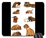 Gaming-Mauspads, Mäusematte, Bordeaux Mastiff Dog Animal White De Mastiffs 11
