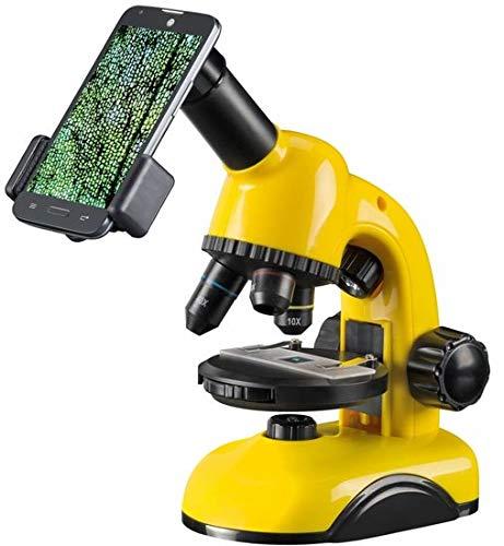 National Geographic Mikroskop 40x-800x mit Smartphone Kamera Halter und Zubehör für den einfachen Start in den Mikroskosmos