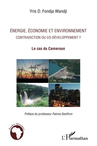 Energie, économie et environnement : Contradiction ou co-développement ? Le cas du Cameroun
