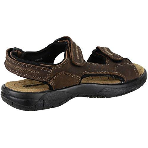 Cotswold Cowley Femmes Été Chaussures Femmes Chaussures Sandale Été Cuir brown