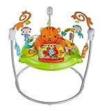 Fisher-Price CHM91 - Jumperoo Baby Hopser inkl. 12 Spielzeugen höhenverstellbar mit Musik und Lichtern, max. 113 kg / 81 cm