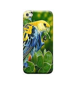 Ebby Premium 3d Desinger Printed Back Case Cover For Apple iPhone 5/5s/SE (Premium Desinger Case)