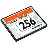 Kingston Technology: 256 MB CompactFlash Card