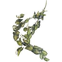 Namiba Terra 5917 Hängepflanze, Gestreifte Speerblattranke, Seide, Circa 110 cm