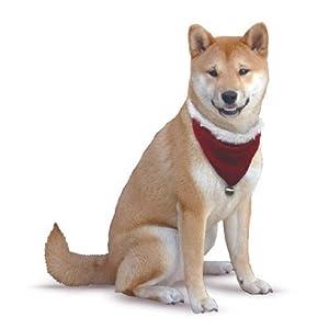 Kyjen Noël Bandana pour chien peluche_p