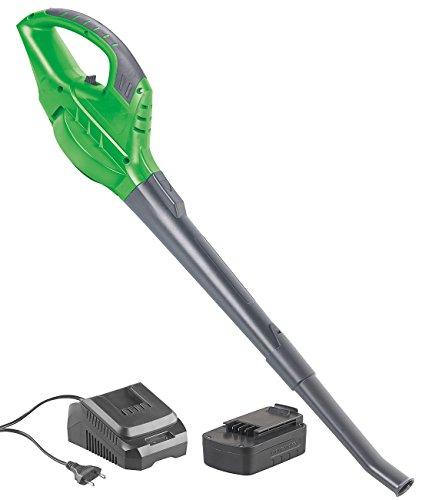 Agt Professional Garten Werkzeug Akku Laubbläser Mit