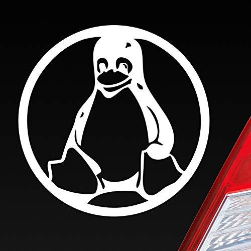Voiture Autocollants dans votre Désir couleur Pingouin Animaux Animal Linux Pingouins 10x 10cm Autocollant pour voiture Stickers Film