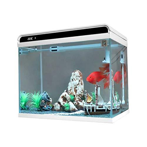 Hjd Acquario Glass Fish Tank Intelligente Temperatura Visualizza Fish Bowl Desktop Aquaponic Acquario con Colore del LED Che Cambia la Lampada, 12L Acquario