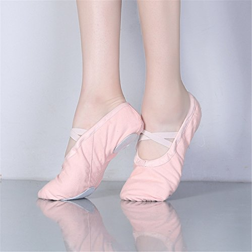 Wxmddn Scarpe da ballo Danza pratica scarpe Yoga scarpe Cat Claw scarpe morbide suole scarpe Rosa chiaro