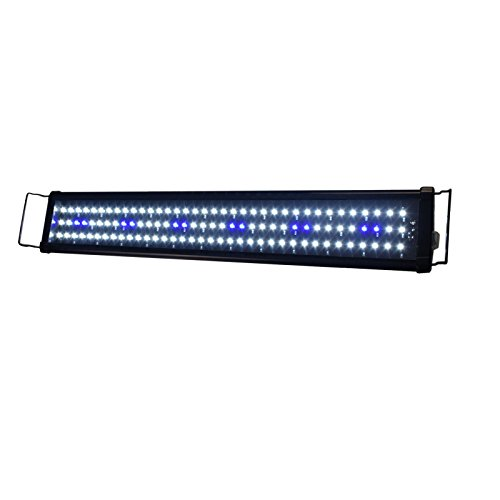 Aquarien Eco Aquarium Aufsatzleuchtung LED Fisch Tank Leuchte Blau + Weiß für Meerwasser Süßwasser (73cm 12W) LED104 (Fisch Aquarium Lampe)