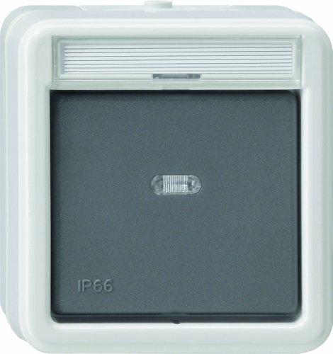 Gira 011231 Wippschalter Aus 2 polig Kontroll WD Aufputz, grau