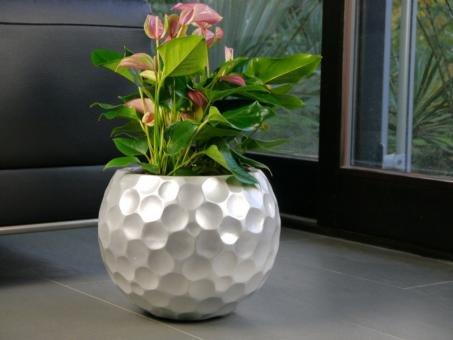Pflanzkübel MONDO aus Fiberglas in matt silber - Größe (LxBxH ...