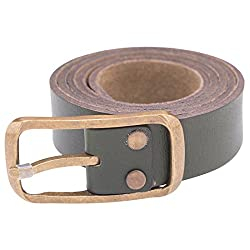 Spykar Mens Leather Belt (SPY/MBL/2AF19_Olive_X-Large)
