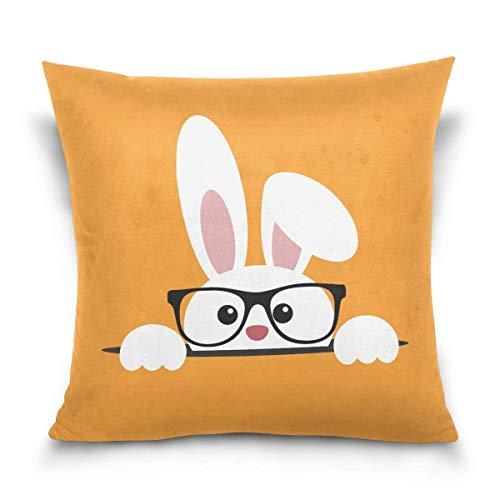 QianruB-No. 1Überwurf Kissen Fall Dekorative Kissenhülle Kissenbezug, COOL Rabbit Bunny Brille Ostern Day Sofa Bett Kissen Schutzhülle (50,8x 50,8cm) Twin Seiten