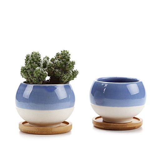 Rachel's 7.5CM Forma de Bola Suculento Cactus Macetas Jardineros de Macetas Contenedores Cajas de Ventana Con Bandeja de Bambú Azul, Paquete de 2