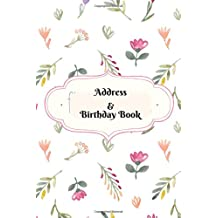 Address & Birthday Book: Birthdays & Address Book for Contacts, Addresses, Phone Numbers, Email, Alphabetical Organizer Journal, Diary, Notebook, For ... Volume 22 (Contact Address Log Books)