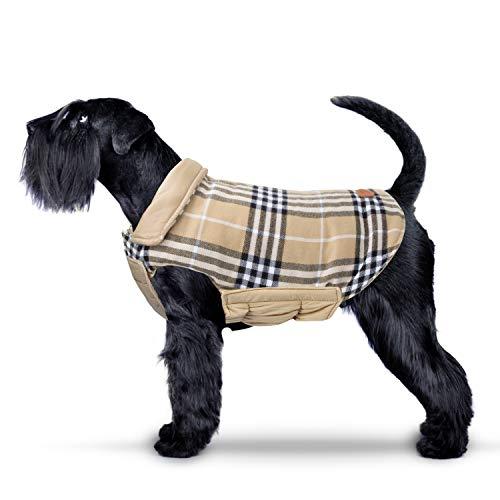 Ireenuo cappotto cane, autunno invernale eleganti cappotto vestiti per cani cane taglia piccola media con apertura per guinzaglio (m, beige)
