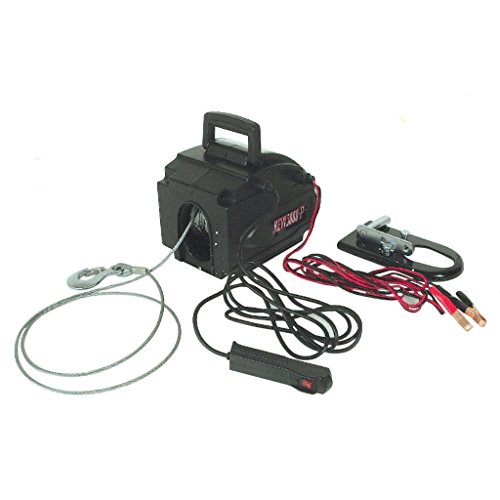 Treuil de traction électrique portable 12 V 500 Kg de force