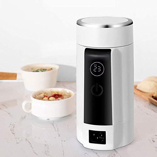 r Wasserkocher Dual Voltage Elektrischer Wasserkocher Travel Warmwasser Heizung Tassenheizer Eintopf Slow Cooker Tragbarer Boiler Thermische Teekanne 100-240V ()