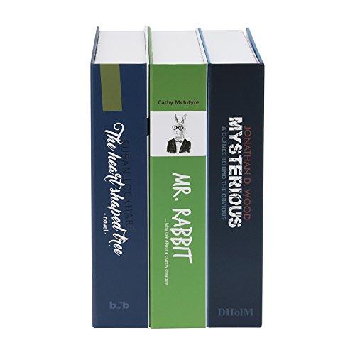 Geldkassette Buchattrappe XL Geldversteck - 2