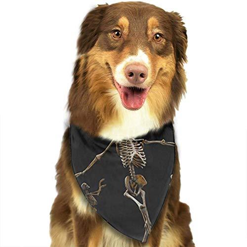 Osmykqe Funny Skeleton Dance Hund Bandana Pet Schal für kleine mittelgroße Hunde Zubehör