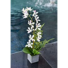 YATAI Artificial Phalaenopsis Orchid Flowers Leaves Branches Artificial Plants Fake Flowers for Home Office Garden Decoration – Silk Flowers Plastic Pot with Moss Grass Arrangement (White)