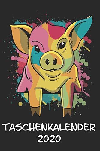Taschenkalender 2020: Taschenkalender für Sept. 2019 bis Dezember 2020 A5 Terminplaner Wochenplaner Terminkalender Wochenkalender Organizer mit Schwein Schweinchen Glücksschwein Minischwein (Schwein Terminkalender)