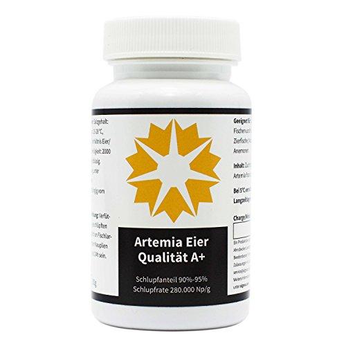 Premium Artemia Uova con molto alta cordoncino Rate - QUALITÀ A + di Artemia Franciscana - Marca algova