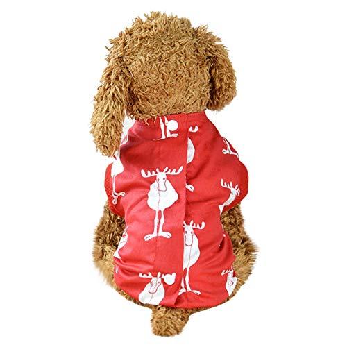 Bluelucon Haustier Leopard-Art-Glühen Lichtmusterkragen Schnalle Einstellbarer Sicherheitshalsband LED Hundehalsband Blinkende Sicherheit Hundehalsband für Hund und Katzen Niedliche (Arten Der Katze Kostüm)