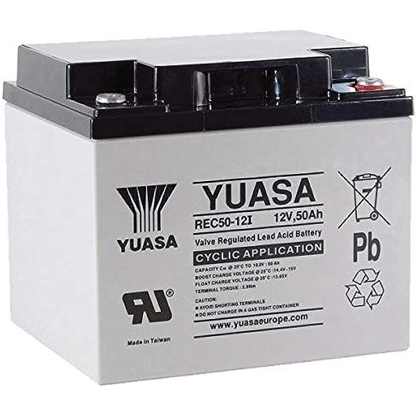 Yuasa Blei-Akku REC50-12I Pb 12V 50Ah Zyklenfest M5 Batterie Akku passend 45Ah,